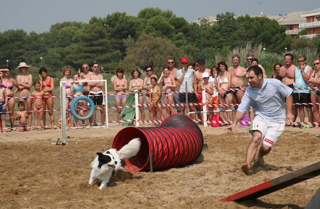 Agility Dog a Bibione Lido del Sole