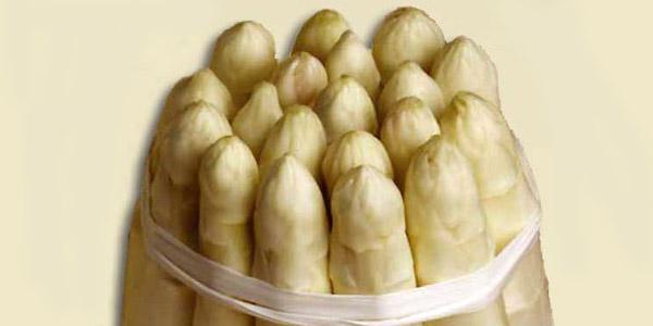 asparago bianco di Bibione
