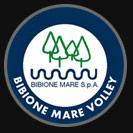 logo BIBIONE MARE VOLLEY