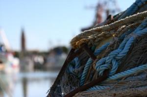 pesca in Veneto