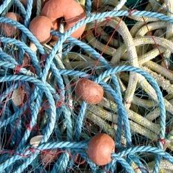 Fermo Pesca Nord Adriatico