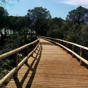 pista ciclopedonale che porta al Faro di Bibione